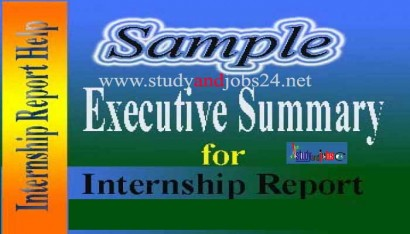 Sample Executive Summary for Internship Report