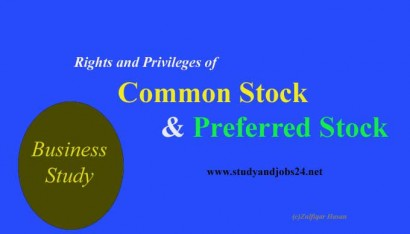 Rights and Privileges of Common Stock and Preferred Stock